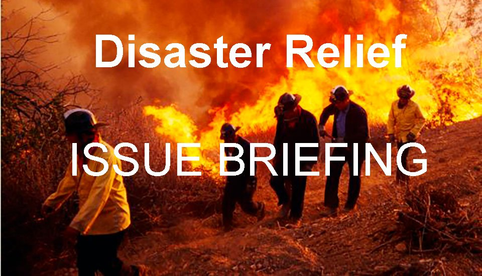 issue_briefing